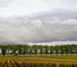 Entre ciel et terre en Bourgogne