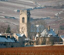 Domaine Cyrot-Buthiau, viticulteur à Pommard