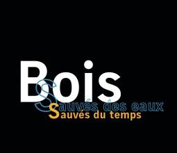Design graphique de l'exposition «Bois, sauvés des eaux, sauvés du temps», Musée d'Archéologie de Dijon